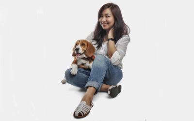 Forrest: the Beagle who gave his PawParent purpose and hope
