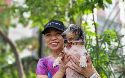 Basha: the furbaby that a mother has always wanted